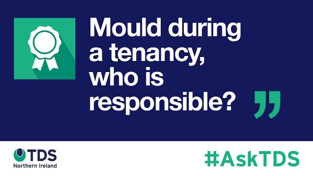 "Image saying ""#AskTDS: ""Mould during a tenancy, who is responsible?"""